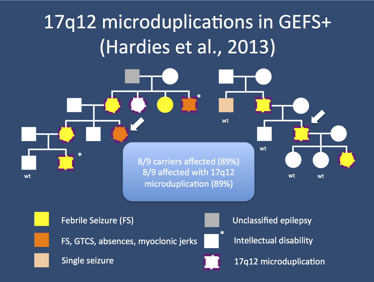 Temperature rising: 17q12 microduplications and GEFS+