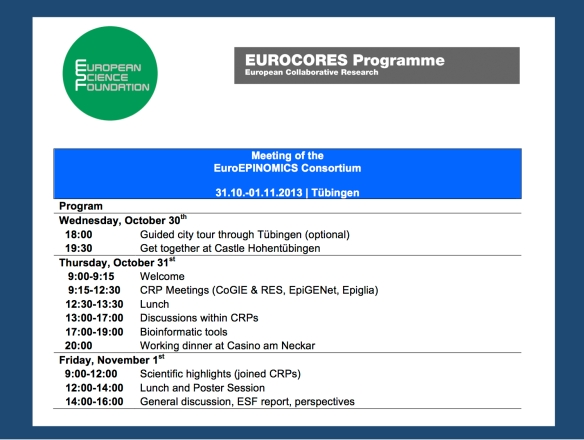 The provisional program for the EuroEPINOMICS General Assembly in Tübingen, Germany.