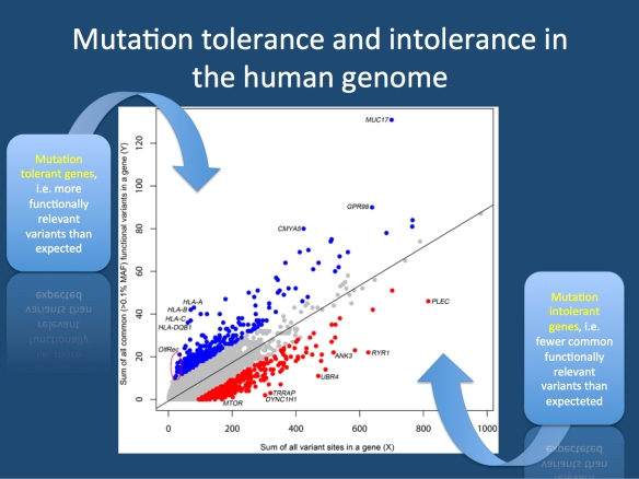 The landscape of mutation intolerance. Figure 1 taken from the publication by Petrovski and collaborators. The genes in the human genome are plotted based on the number of all variants in a genes (X) compared to the number of common functionally relevant variants (Y). For example, some HLA genes harbor a relatively high number of common functionally relevant mutations compared to the overall variant load. On the other hand, genes like MTOR or RYR1 have fewer functionally relevant variants than expected. This comparison between X and Y is called the Residual Variation Intolerance Score (RVIS). An RVIS  0 mutation tolerance. Many of the genes in epileptic encephalopathies are amongst the top 10-15% of mutation intolerant genes. (Figure adapted base on the Creative Commons Attribution License (CCAL) of PLOS Genetics from http://www.plosgenetics.org/article/info:doi/10.1371/journal.pgen.1003709)
