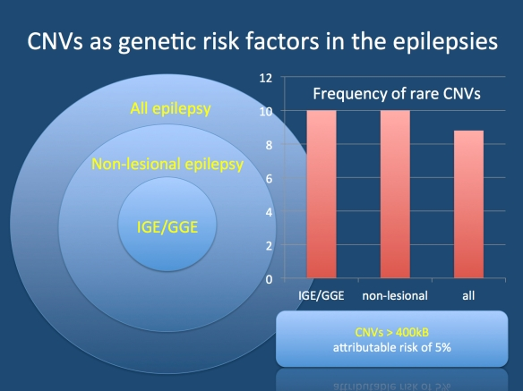 Copy Number Variation (CNVs) are risk factors across a broad range of epilepsy phenotypes, also including epilepsies previously considered lesional. CNVs were first investigated in the Idiopathic/Genetic Generalized Epilepsies (IGE/GGE), subsequently followed by studies in other non-lesional epilepsies. In our recent studies, we also included epilepsies with complex phenotypes, including many patients with definite or questionable MRI findings. We find that CNVs have an attributable risk of 5%, independent of the epilepsy phenotype, questioning the long-held distinction between genetic and lesional causes for epilepsy.
