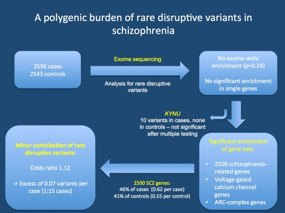 Study by Purcell and collaborators. 2500 cases and 2500 controls were exome-sequenced and analyzed for rare, disruptive variants. The authors find neither an exome-wide enrichment nor a significant enrichment of single genes. However, when focusing on schizophrenia-related gene set, they find a significant enrichment. Even the most comprehensive gene set only provides excess of 0.07 variants per case, i.e. on average an excess variant in 1:15 patient with schizophrenia.