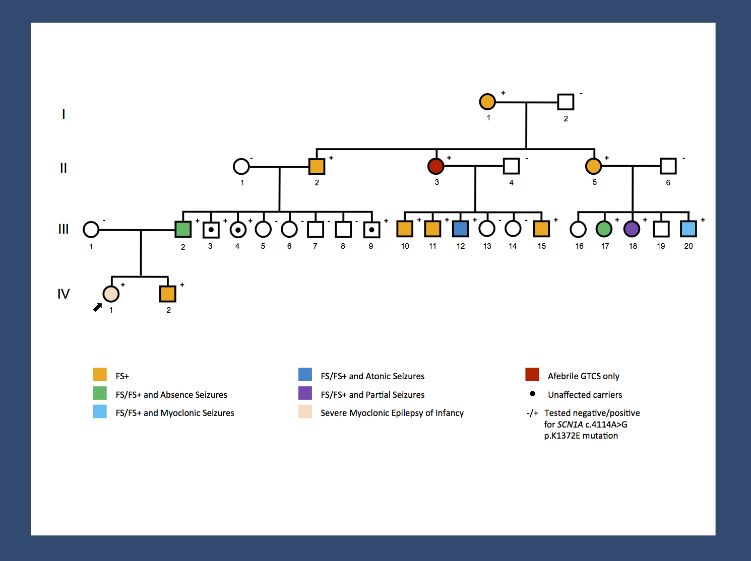 Re-posting one of our figures from November 2013 - a pedigree of a large GEFS+ family with 14 affected and 3 unaffected carriers published by Goldberg-Stern and colleagues. A missense mutation results in a broad range of phenotypes spanning unaffected carriers, Febrile Seizures Plus (FS+) phenotypes and Dravet Syndrome. The range of phenotypes seen in this family suggests that SCN1A is not the entire story. It will be interesting to investigate whether the modifying factors are genetic or non-genetic. The pattern of phenotypes suggests some intra-familial factors. (Disclaimer: I am a coauthor on the publication by Goldberg-Stern and colleagues).