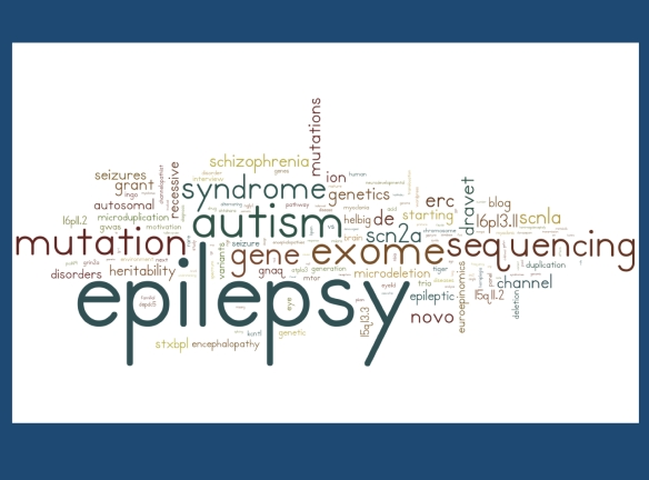 "These are the terms that led you to our blog in 2011-2014, arranged as a Wordle. Beside the obvious search terms (""epilepsy"", ""mutation""), there are some surprising findings that give us an insight on what information you are looking for. For example, we were surprised by the frequency of searches for microdeletion 16p13.11 and SCN2A.  [generated with wordle.net]"